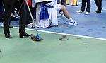 TENIS, BEOGRAD, 05. Dec. 2010. - Sisanje. Teniseri Srbije pobednici su Davis cupa za 2010. godinu. Finale Davis cup-a izmedju selekcija Srbije i Francuske koje se igra od 3-5 decembra u beogradskoj Areni. Davis cup final Serbia vs France. Foto: Nenad Negovanovic