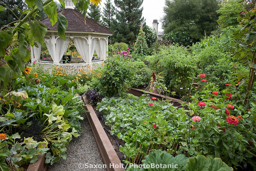 Raised bed garden of edible landscaping (Vegetables,flowers, herbs) designed around gazebo