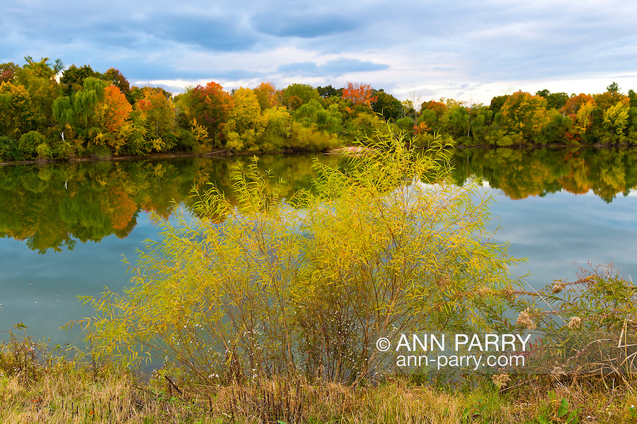New York, USA. 23rd October 2013. Colors of autumn foliage start to arrive at pond on North Shore of Long Island.