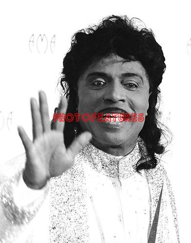 Little Richard 1997 American Music Awards