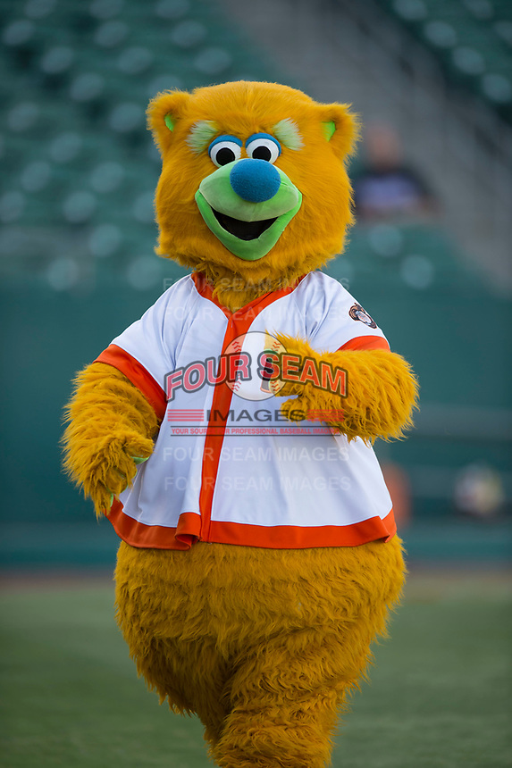 Fresno Grizzlies mascot Parker before a Pacific Coast League game against the Salt Lake Bees at Chukchansi Park on May 14, 2018 in Fresno, California. Fresno defeated Salt Lake 4-3. (Zachary Lucy/Four Seam Images)