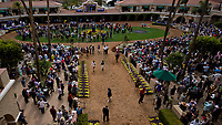 DEL MAR, CA - NOVEMBER 03: The paddock fills up on Day 1 of the 2017 Breeders' Cup World Championships at Del Mar Racing Club on November 3, 2017 in Del Mar, California. (Photo by Scott Serio/Eclipse Sportswire/Breeders Cup)