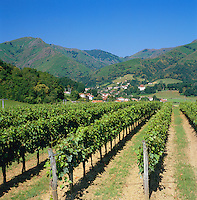 France, Aquitaine (Pays Basque), St. Etienne De Baigorry: Vineyard Oronzia, at background Pyrenees mountains | Frankreich, Aquitanien (Baskenland), St. Etienne De Baigorry: Weingut Oronzia, im Hintergrund die Pyrenaeen