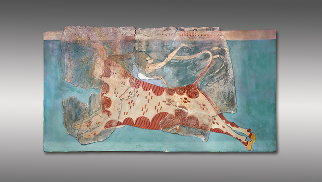 Mycenaean Fresco wall painting of a Mycanaean acrobat leaping over a bull, Early Palace,  Tiryns, Greece.  Athens Archaeological Museum. Grey Background<br /> <br /> 14th  Cent BC.. Cat No 1595. The Mycenaean Fresco depicts an acrobat leaping over a charging bull whilst holding onto its horns. This ritual symbolised the struggle of domination of man over wild nature.
