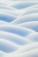 Snow covered tussocks on the tundra, Arctic, Alaska