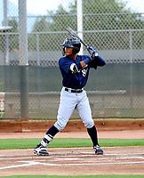 Carlos Rodriguez - 2018 AIL Brewers (Bill Mitchell)