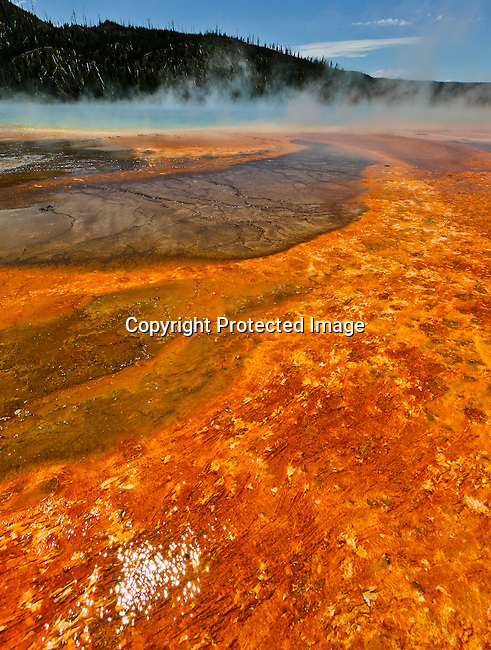 Yellowstone National Park, Wyoming/Montana.<br /> Jim Urquhart/Straylighteffect.com