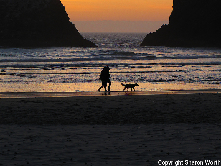A pair of dog walkers take in the sunset along the beach below Haceta Head Lighthoue near Florence, Oregon.