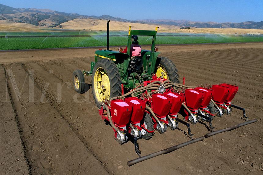 SEEDING the fields by TRACTOR - SALINAS, CALIFORNIA