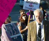 Animal advocates protest the Ringling Bros. and Barnum & Bailey Circus outside the Xfinity Arena in Everett, Wash. on October 4, 2015. (photo Karen Ducey photography).