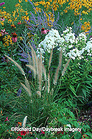 63821-09118 Fountain Grass, White Garden Phlox, Russian Sage, Purple Coneflowers, Gray-headed Coneflowers. Marion Co. IL
