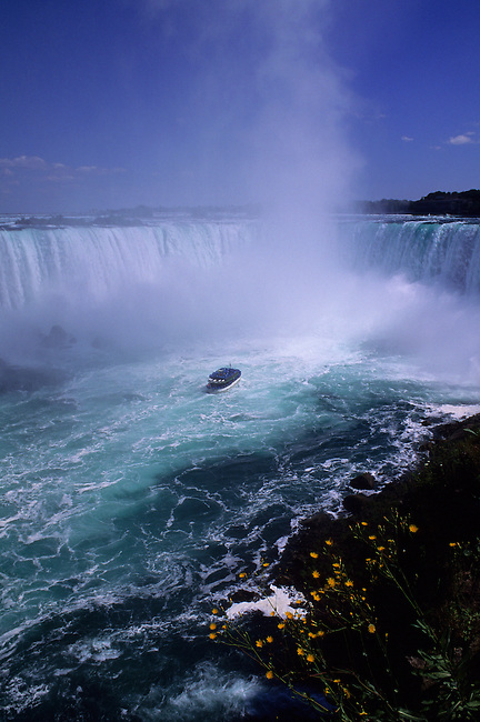 CANADA, ONTARIO, NIAGARA RIVER, NIAGARA FALLS, HORSESHOE FALLS, MAID OF THE MIST, FLOWERS IN FOREGROUND