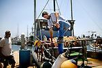 Kip Whited, 49, of Oxnard, Ca., and his brother, Bob Whited, 51, visiting from Idaho, collect nets off three-miles coast of Ventura, on Friday, July 31, 2009. Kip is  along time fisherman, who supports his family off his income.