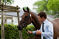 AUS-Christopher Burton (HARUZAC) 2012 GER-CHIO Aachen Weltfest des Pferdesports (Thursday) - CICO*** Eventing 1ST Horse Inspection
