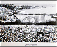 BNPS.co.uk (01202 558833)<br /> Pic: PhilYeomans/BNPS<br /> <br /> Newlyn's daffodil pickers were even recorded.<br /> <br /> Chilling - Hitlers 'How to' guide to the invasion of Britain.<br /> <br /> A remarkably detailed invasion plan pack of Britain has been unearthed to reveal how our genteel seaside resorts would have been in the front line had Hitler got his way in World War Two.<br /> <br /> The Operation Sea Lion documents, which were issued to German military headquarters' on August 1, 1940, contain numerous maps and photos of every town on the south coast.<br /> <br /> They provide a chilling reminder of how well prepared a German invading force would have been had the Luftwaffe not been rebuffed by The Few in the Battle of Britain.<br /> <br /> There is a large selection of black and white photos of seaside resorts and notable landmarks stretching all the way from Land's End in Cornwall to Broadstairs in Kent.<br /> <br /> The pack also features a map of Hastings, raising the possibility that a second battle could have been staged there, almost 900 years after the invading William The Conqueror triumphed in 1066.