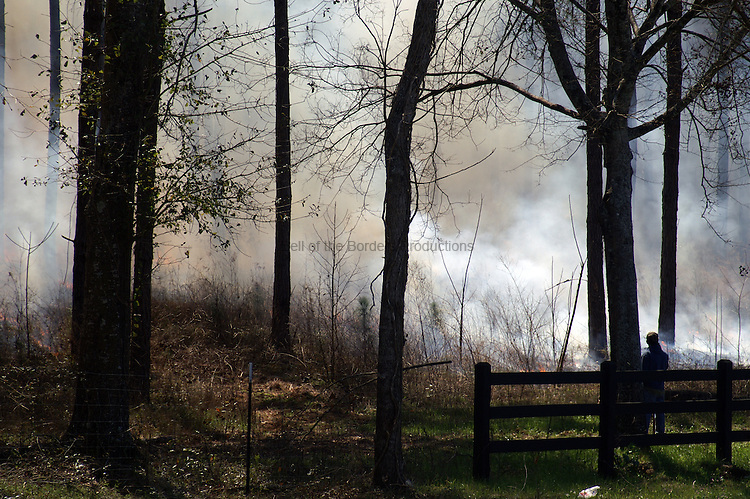 A controlled burn is used to remove old plant material from an area and to kill bushed and young hardwood trees in a pine stand.  The burn is monitored to ensure that it does not get out of control.