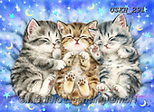 Kayomi, CUTE ANIMALS, LUSTIGE TIERE, ANIMALITOS DIVERTIDOS, paintings+++++,USKH291,#ac#, EVERYDAY