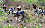 Helena B. Mensahn, 37, and other women prepare the ground for planting on a six-acre farm where several dozen women are farming cassava in Mount Barclay, Liberia. The income-generating project is administered by the National Federation of Women Employees and Allied Workers, with financial support from United Methodist Women.