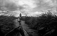 Okavango Delta, Botsuana 1991