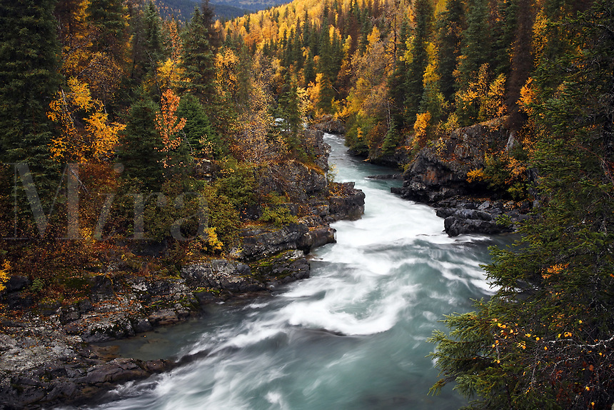 Six Mile Creek, Kenai Peninsula, Chugach National Forest, Alaska.