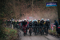 the wet&amp;cold conditions make the peloton create their own mist cloud (damp) above them coming up the Trieu<br /> <br /> 73rd Dwars Door Vlaanderen 2018 (1.UWT)<br /> Roeselare - Waregem (BEL): 180km
