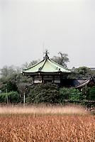 Tokyo: Temple, Ueno Park. Photo '82.