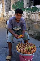 Europe/Turquie/Antalya : Petit marchand de figues de barbarie