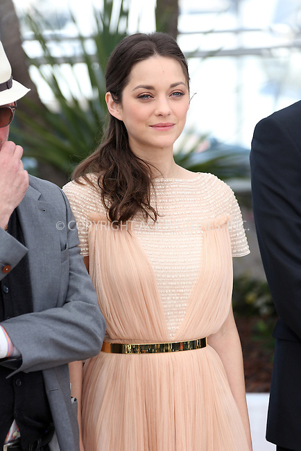 WWW.ACEPIXS.COM . . . . .  ..... . . . . US SALES ONLY . . . . .....May 17 2012, Cannes....Marion Cotillard at the photocall for 'Rust & Bone' at the Cannes Film Festival on May 16 2012 in Cannes, France....Please byline: FAMOUS-ACE PICTURES... . . . .  ....Ace Pictures, Inc:  ..Tel: (212) 243-8787..e-mail: info@acepixs.com..web: http://www.acepixs.com