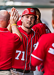 24 February 2019: Washington Nationals infielder Jake Noll returns to the dugout after scoring in a Spring Training game against the St. Louis Cardinals at Roger Dean Stadium in Jupiter, Florida. The Nationals defeated the Cardinals 12-2 in Grapefruit League play. Mandatory Credit: Ed Wolfstein Photo *** RAW (NEF) Image File Available ***