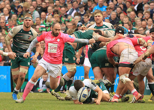10.04.2016. Welford Road, Leicester, England. European Champions Cup. Leicester Tigers versus Stade Francais.  Stay scrum-half Julien Dupuy disrupts the back of the Tigers scrum.