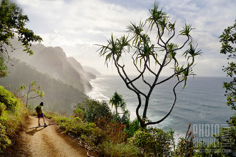 A hiker pauses on the Hanakapi'ai Trail leading to Kalalau Valley, Na Pali Coast, North Shore, Kaua'i.