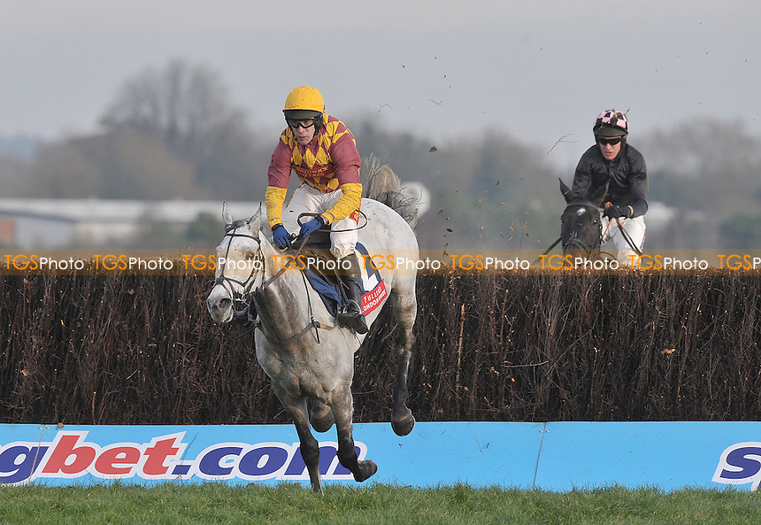 Dynaste ridden by Tom Scudamore jumps the last to win the feature race the Fuller´s London Pride Novices´ Chase (Registered As The Berkshire Novices´ Steeple Chase) (Grade 2) Cl1   - Horse Racing at Newbury Racecourse, Newbury, Berkshire -30/11/2012 - MANDATORY CREDIT: Martin Dalton/TGSPHOTO - Self billing applies where appropriate - 0845 094 6026 - contact@tgsphoto.co.uk - NO UNPAID USE.