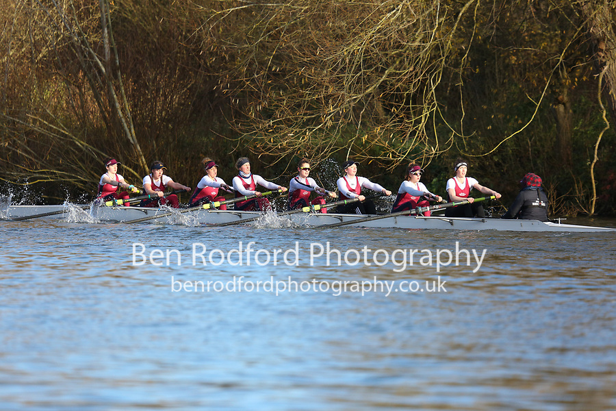 Crew: 66   W 8+ BAND-2   Oxford Brookes University Boat Club   OXB-W8+ C<br /> <br /> Wallingford Head 2017<br /> <br /> To purchase this photo, or to see pricing information for Prints and Downloads, click the blue 'Add to Cart' button at the top-right of the page.