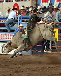 Greeley Independence Stampede 2006