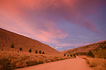 Sunset clouds over a dirt road in the Eastern Sierra, Green Creek Area, Toiyabe National Forest, California