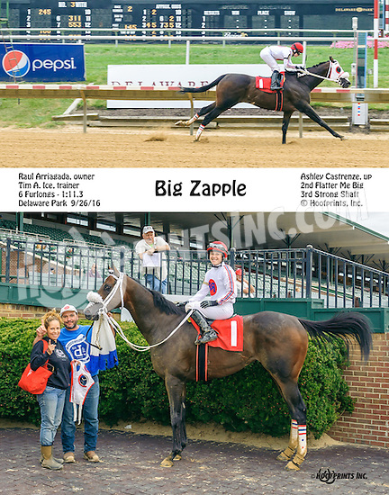 Big Zapple winning at Delaware Park on 9/26/16
