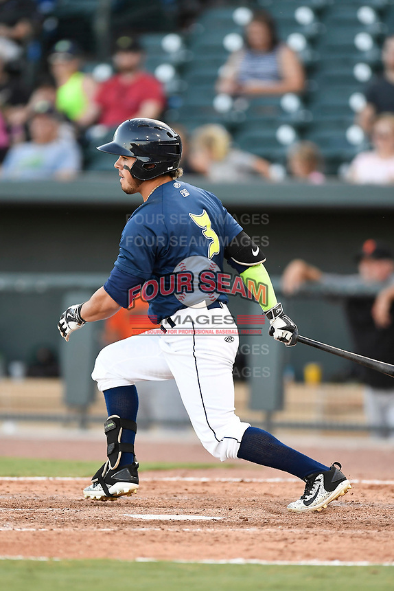 Right fielder Arnaldo Berrios (3) of the Columbia Fireflies bats in a game against the Augusta GreenJackets on Sunday, July 30, 2017, at Spirit Communications Park in Columbia, South Carolina. Augusta won, 6-0. (Tom Priddy/Four Seam Images)