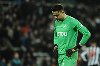 A frustrated Lukasz Fabianski of Swansea City during Newcastle United vs Swansea City, Premier League Football at St. James' Park on 13th January 2018
