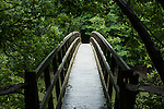 Bridge to Hanger Meadow in High Weald woodland. Wakehurst Place - Royal Botanic Gardens, Kew. Ardingly, West Sussex, UK.