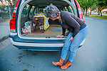 A volunteer for H.A.R.P. (Homeless Animal Response Program), of Antioch, checks on a recently trapped cat in Antioch, California, on Friday, March 21, 2014.  Photo/Victoria Sheridan