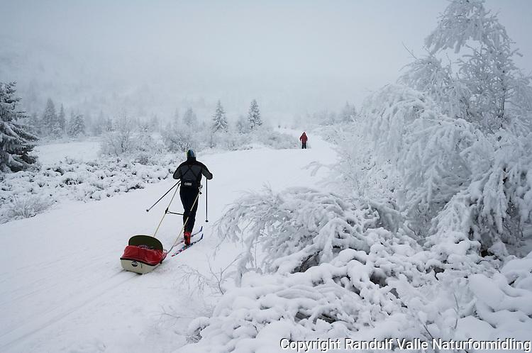 Mann trekker pulk blant snødekte trær på Peer Gynt vegen ---- Mann pulling sled