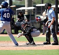 Evan Skoug - 2017 AIL White Sox (Bill Mitchell)