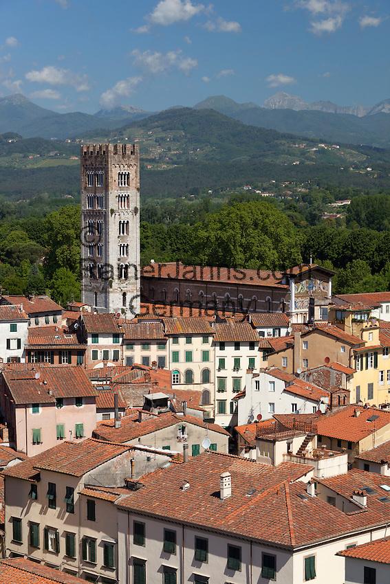 Italy, Tuscany, Lucca: View over city to San Frediano from atop Torre Guinigi   Italien, Toskana, Lucca: Blick vom Torre Guinigi ueber die Altstadt mit der romanischen Kirche San Frediano