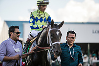 LOUISVILLE, KY - MAY 06: Always Dreaming #5 with John Velazquez up enters the winners circle at theKentucky Derby at Churchill Downs on May 6, 2017 in Louisville, Kentucky. (Photo by Alex Evers/Eclipse Sportswire/Getty Images)