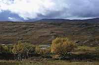 Autumn in the mountain Landscape, landskap,