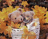 Carl, CUTE ANIMALS, teddies, photos, 2 teddies, white basket(SWLA1698,#AC#)