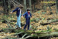 DT09-017z  Forest - children walking on decaying log