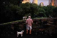Dog walker in Frederick Law Olmsted's Central Park.
