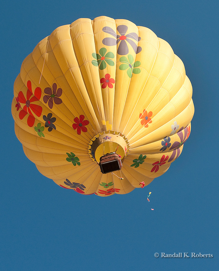 """Mountain Breeze""  pops a small balloon during a contest at the Snowmass Balloon Festival, Sept. 18-20, 2009"