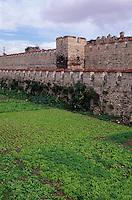 Türkei, Theodosianische Landmauer (Teodos II. Suru) in Istanbul , UNESCO-Weltkulturerbe